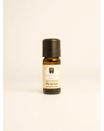 Pin Laricio bio - huile essentielle -10ml