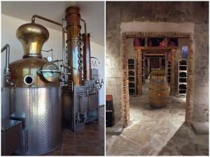 Alambic Holstein et cave de la distillerie Mavela